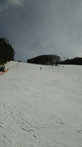 白樺のスキー場へ