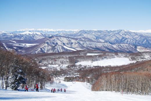 白樺高原国際スキー場