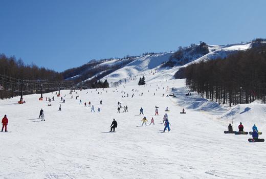 白樺 2 in 1 スキー場