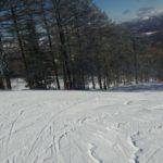 スキーに行って来ました♪