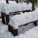 昨夜からの雪!