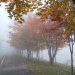 霧の女神湖