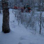 やっと  雪が降りました‼️
